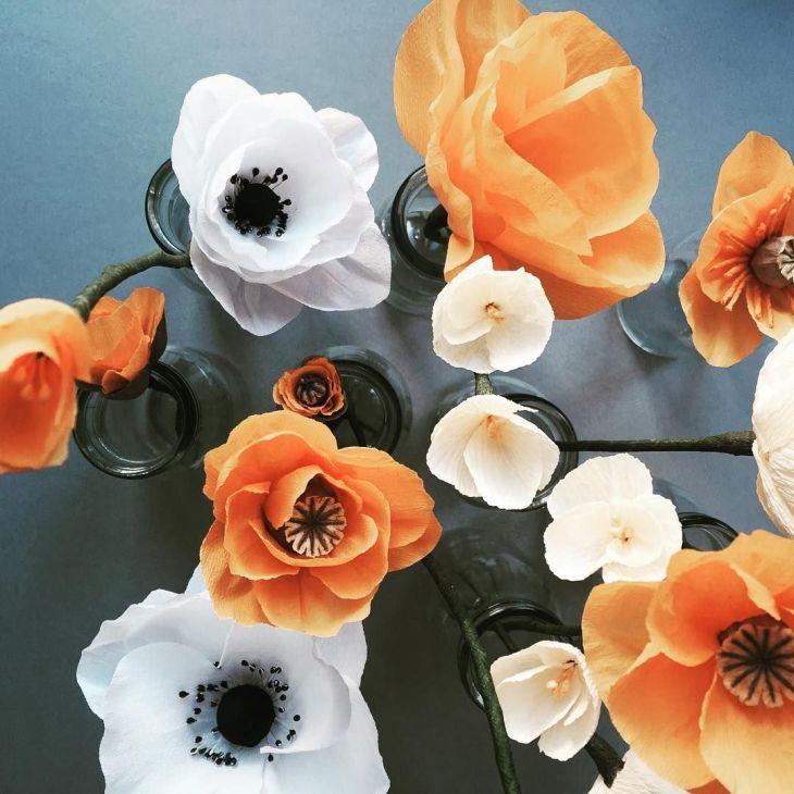Happy Sunday paperflower allthingsbotanical wildflowers