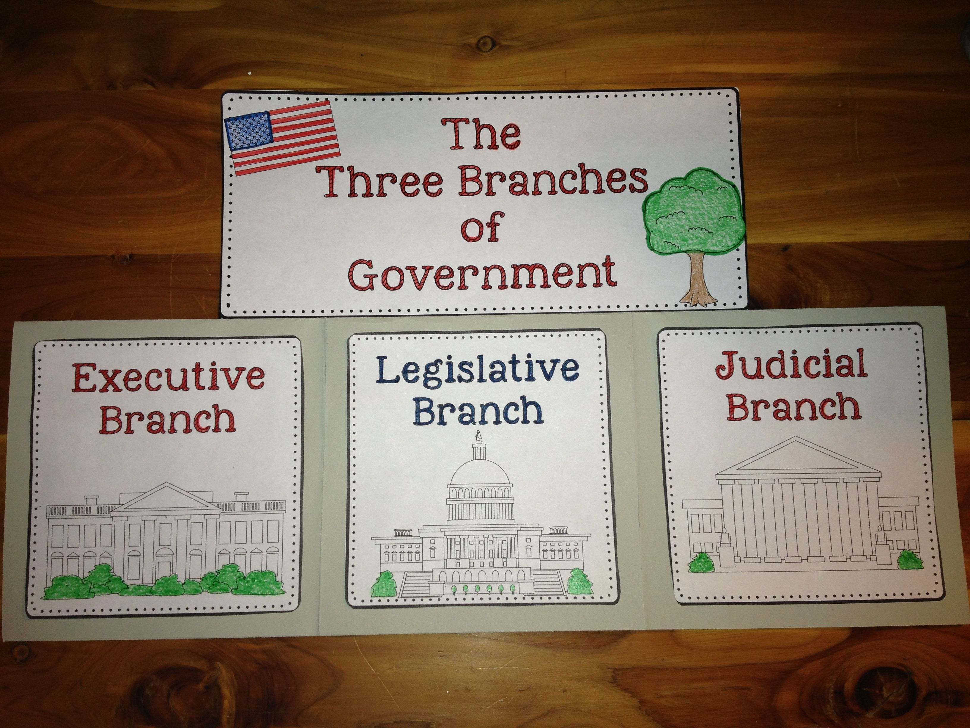 Constitution And The Three Branches Of Government A
