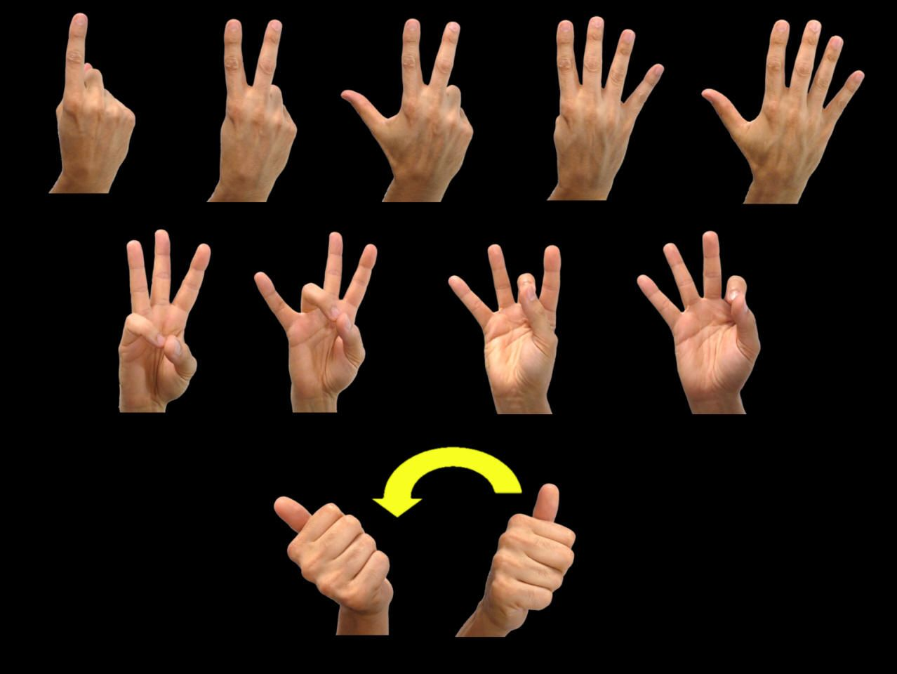This Is My American Number Sign Language Lens Page From