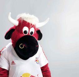 Résultats de recherche d'images pour «red bull salzbourg mascotte»
