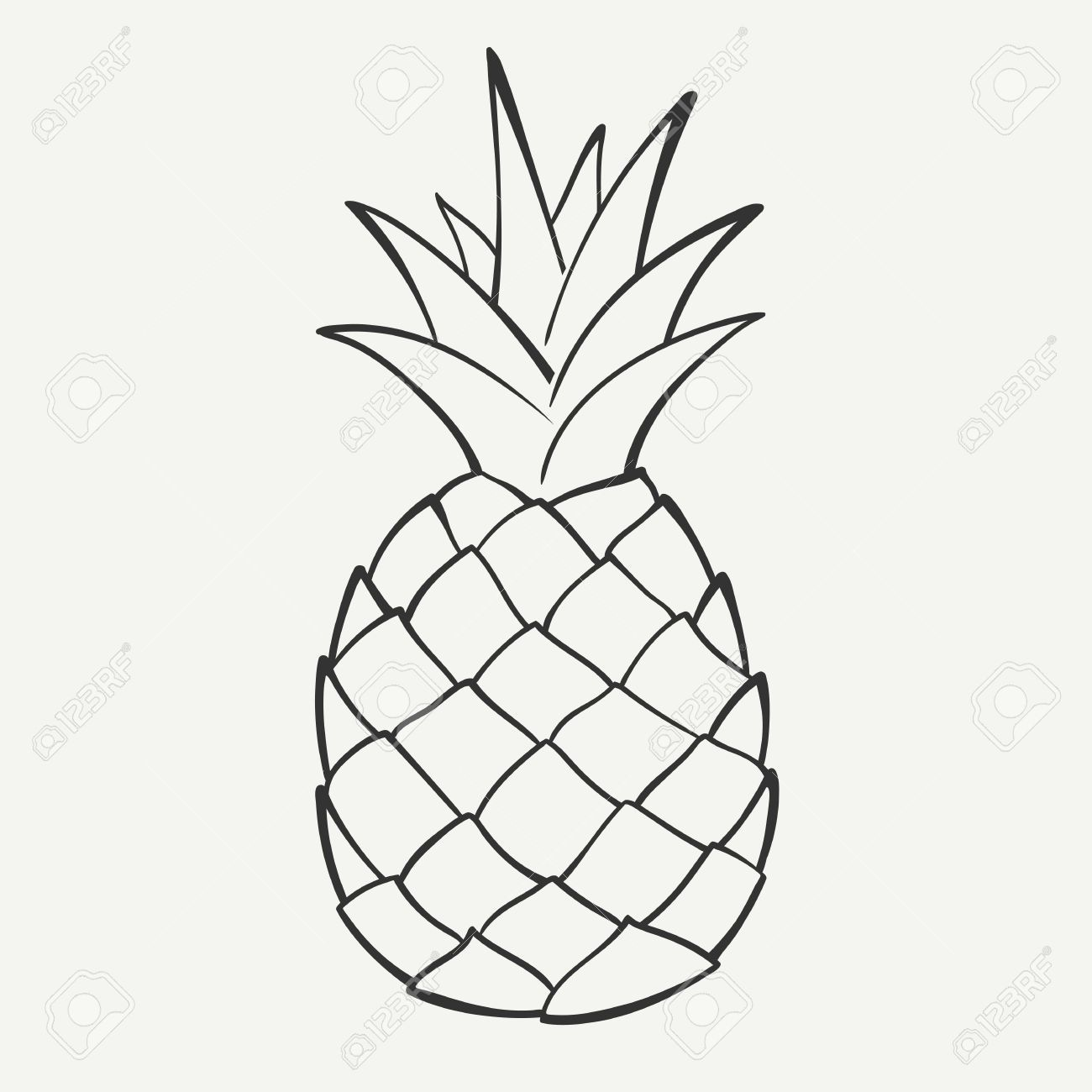 Outline Black And White Image Of A Pineapple Royalty Free Cliparts Vectors And Stock