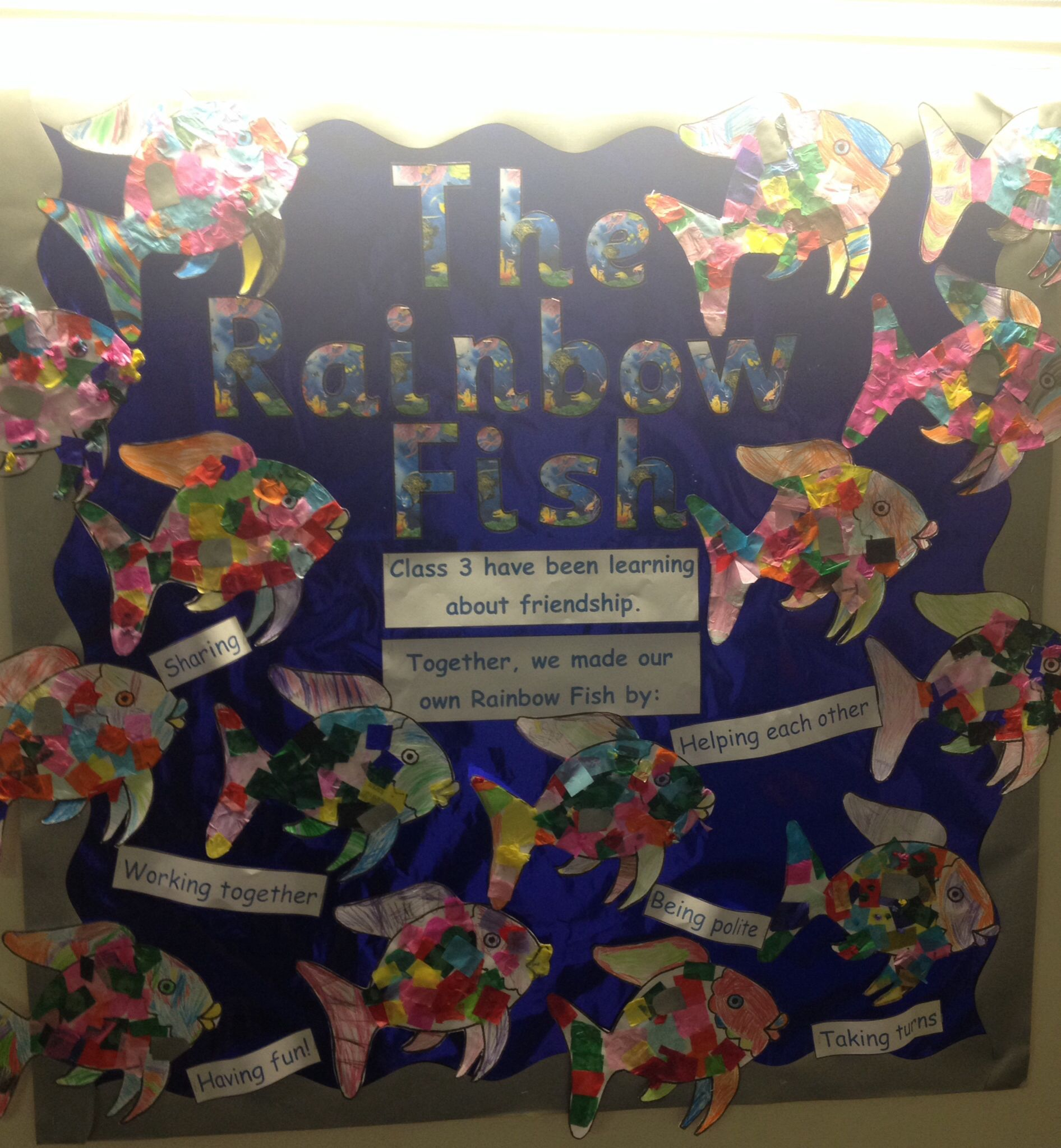 The Rainbow Fish Display