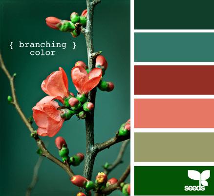 Best 25 Color Palette Green Ideas On Pinterest Green