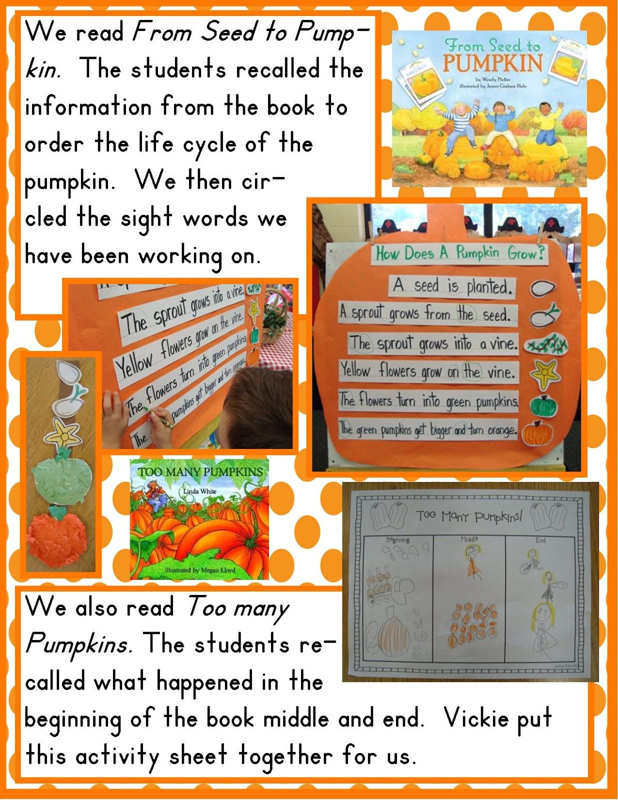 Pumpkin Life Cycle Chart Using Book From Seed To Pumpkin From Golden Gang Kindergarten
