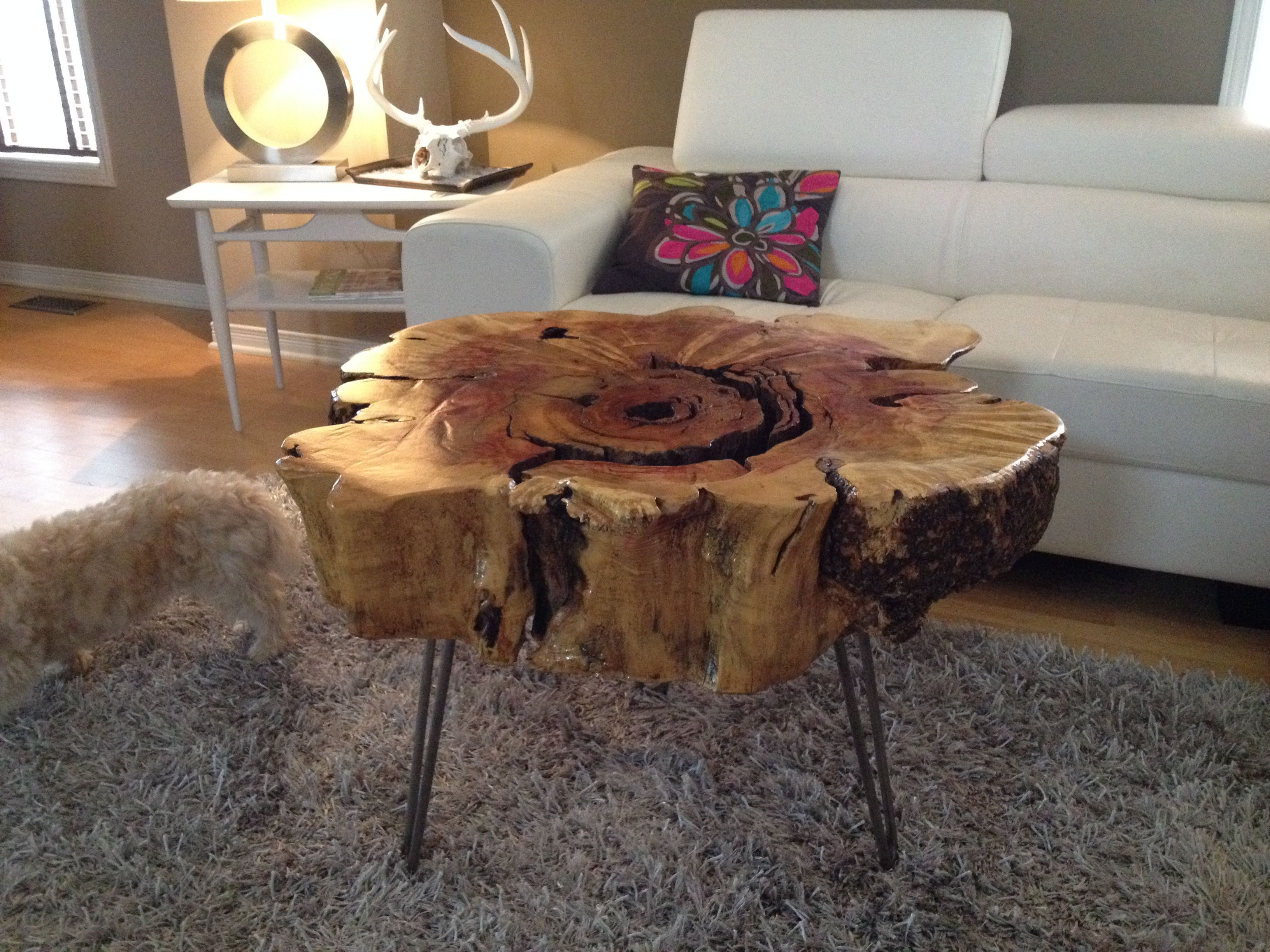 Stump Table With Hairpin Metal Legs. Stump End Table