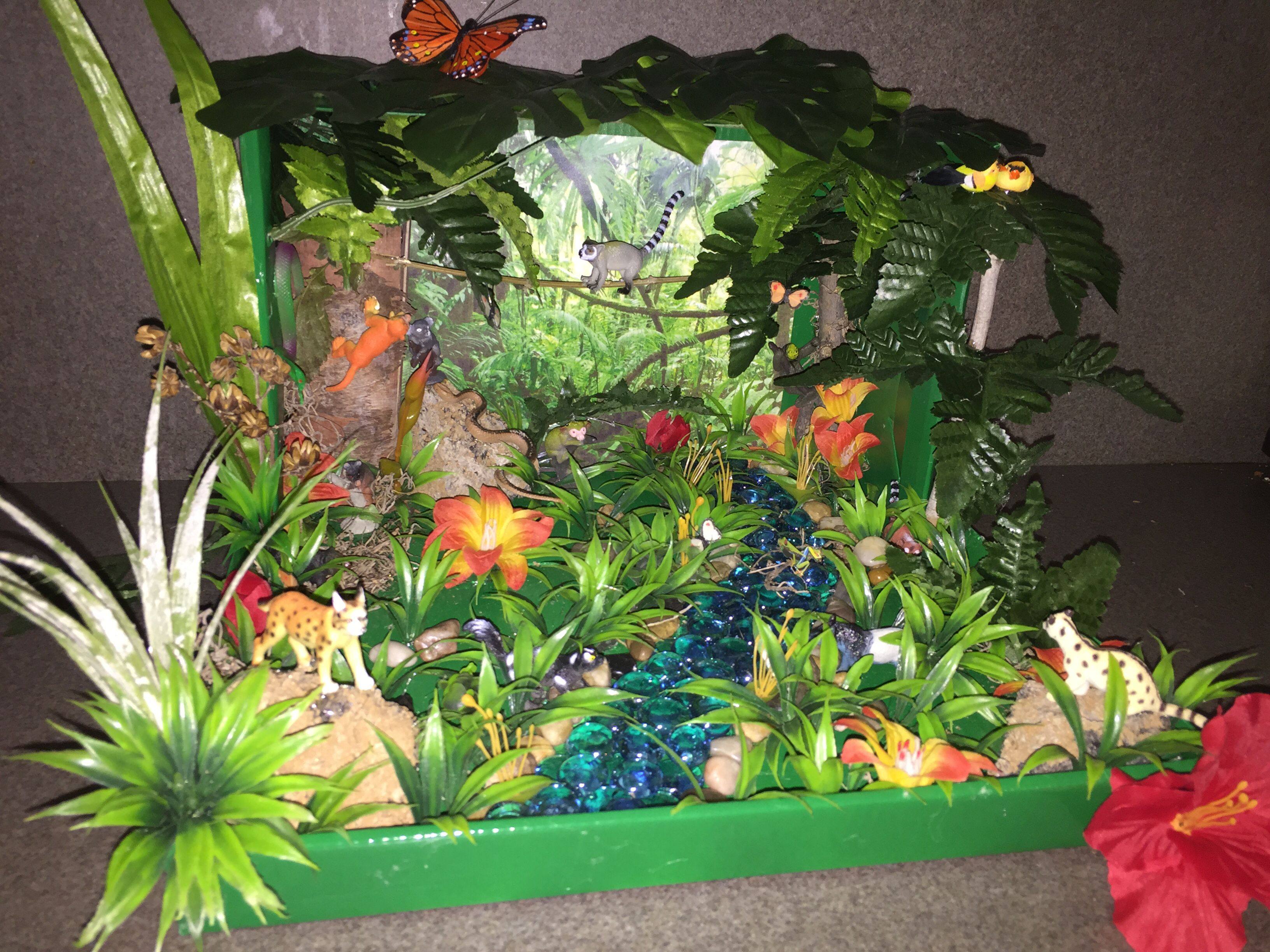 Our Rainforest Diorama For Kindergarten We Got Everything Except The Animals At The Dollar