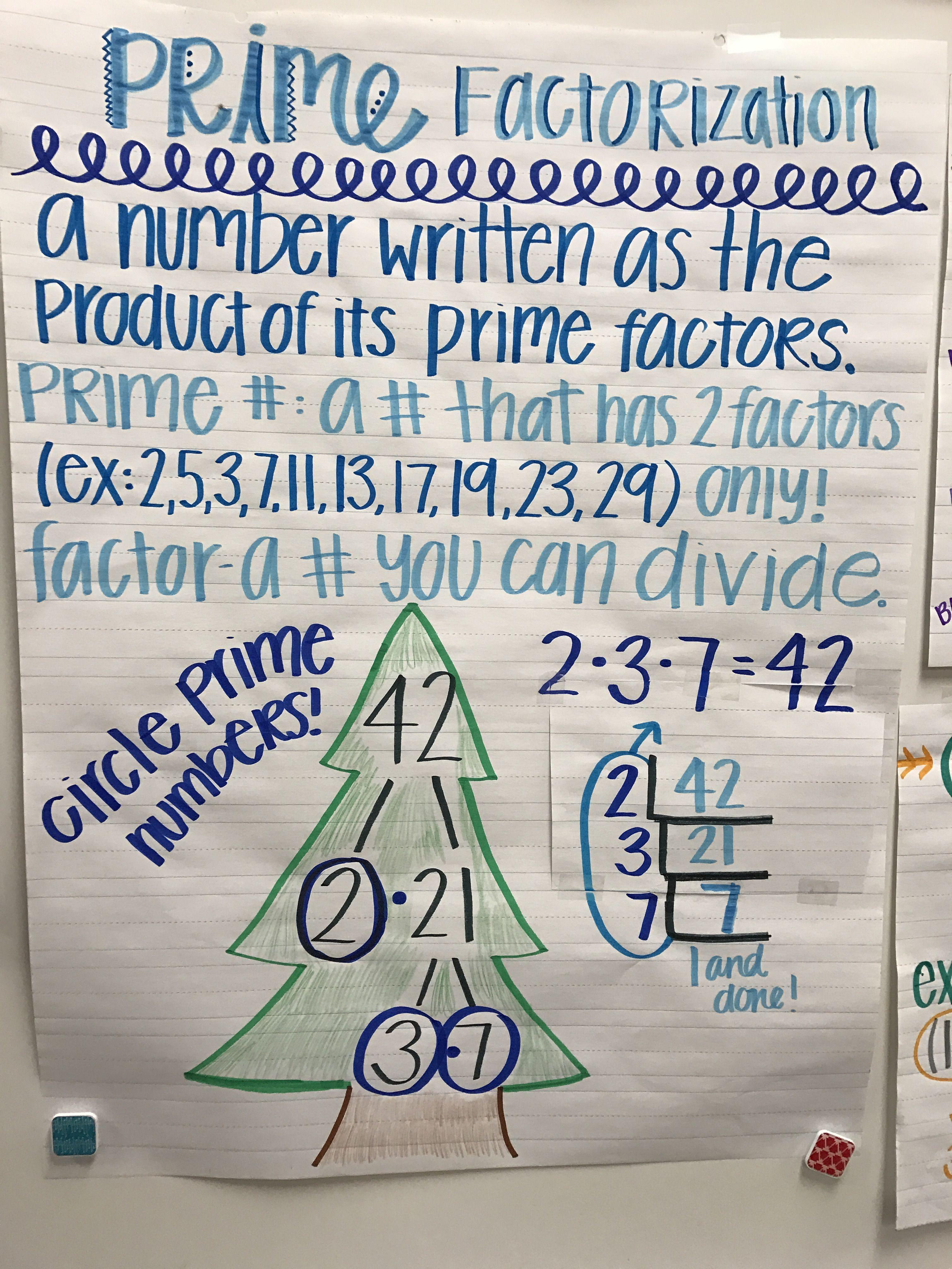 Prime Factorization 6th Grade Math 6th Grade Math Anchor