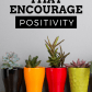 Houseplants that encourage positivity benefit plants and houseplants