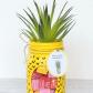 Transform a plain mason jar into a fun pineapple candy jar plus