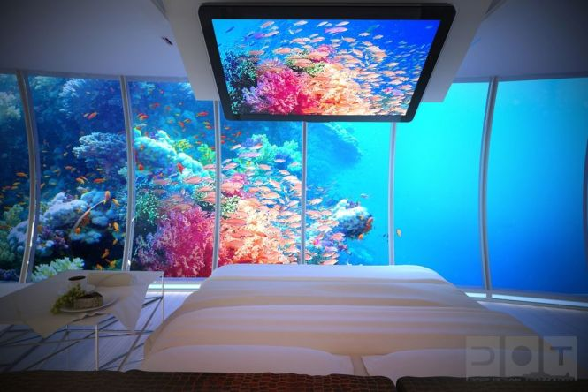 1000 Images About Fish Tanks On Pinterest Rock Bedroom Home. Fish Tank Bedroom   Bedroom Style Ideas