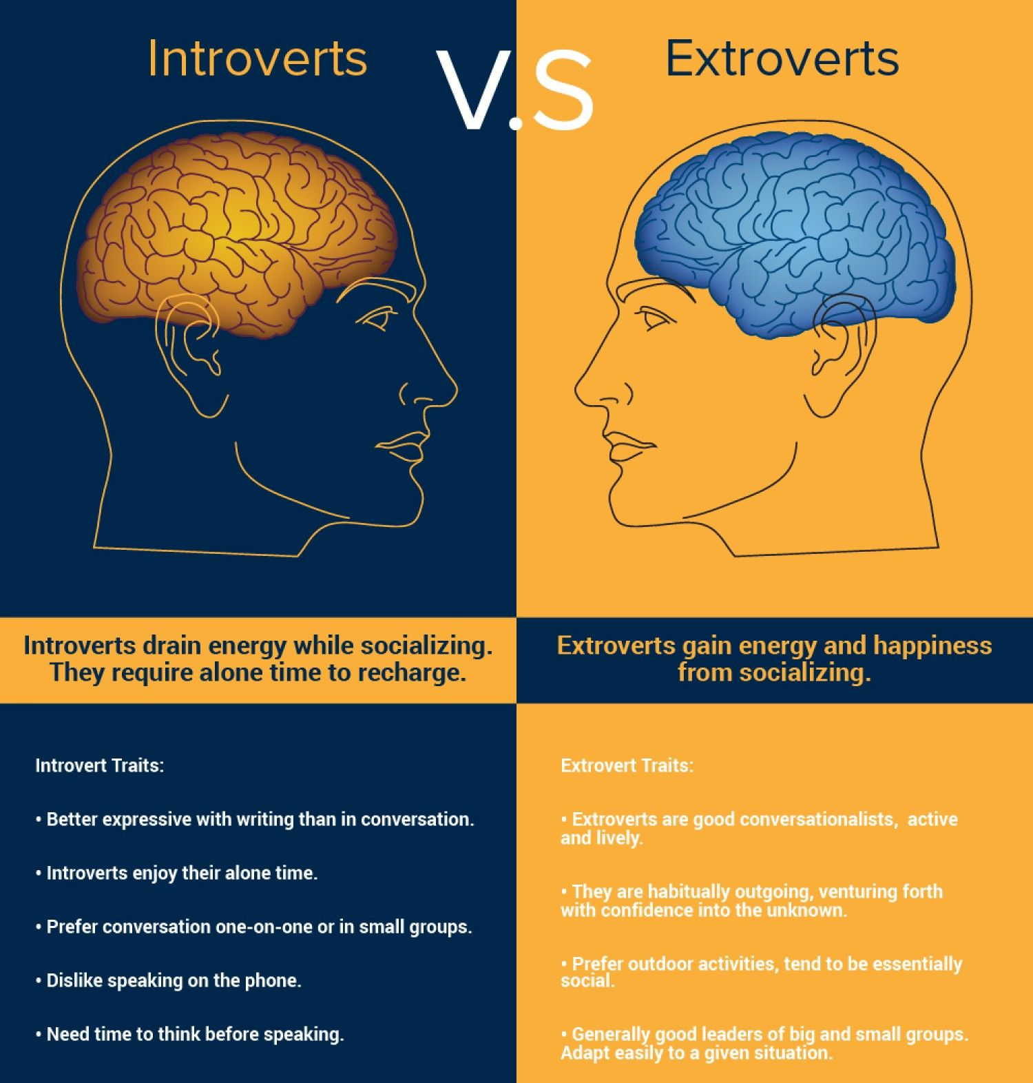 INTROVERTS VS EXTROVERTS Infographic Quotes Aww And