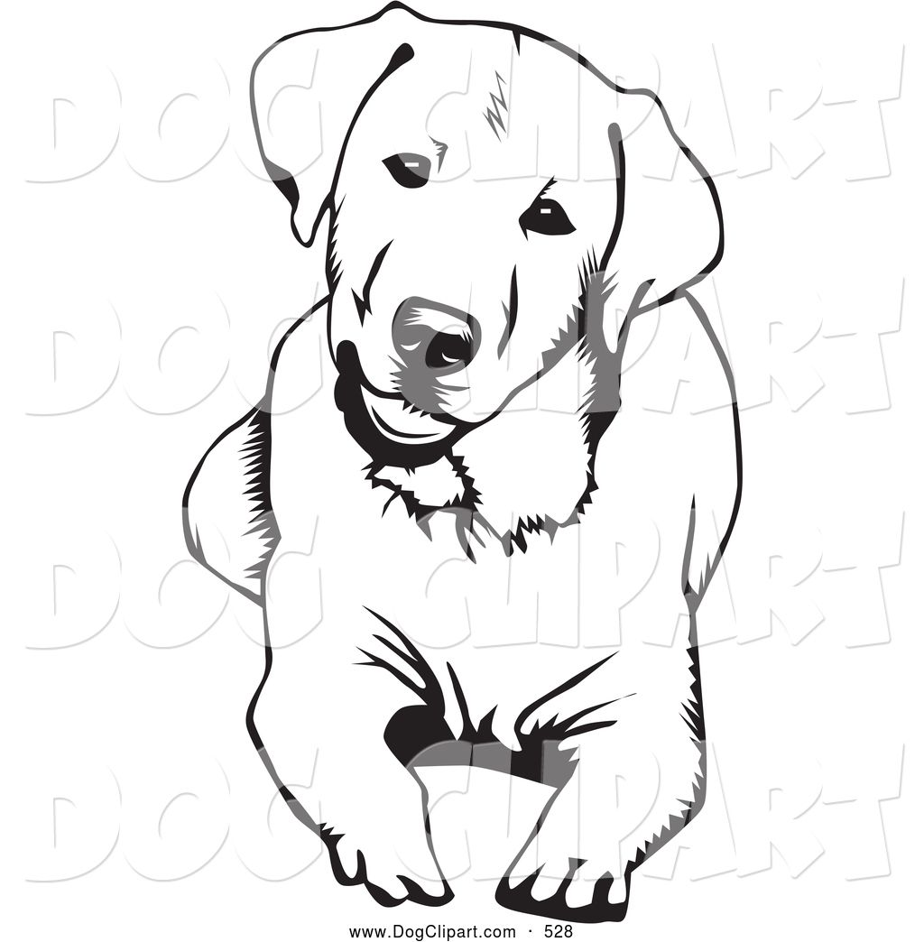 Clip Art Of A Happy And Cute And Curious Labrador