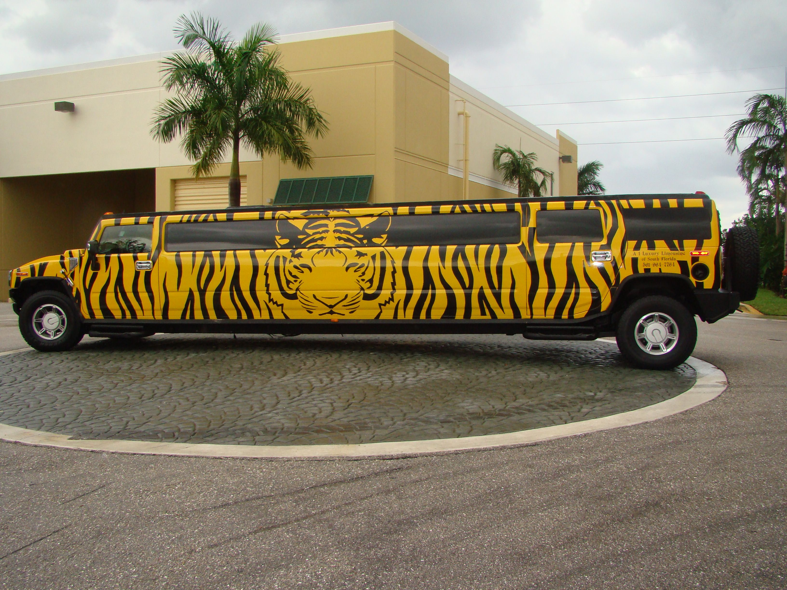 Tiger Hummer Limo I just stumbled upon this mind boggling fancy