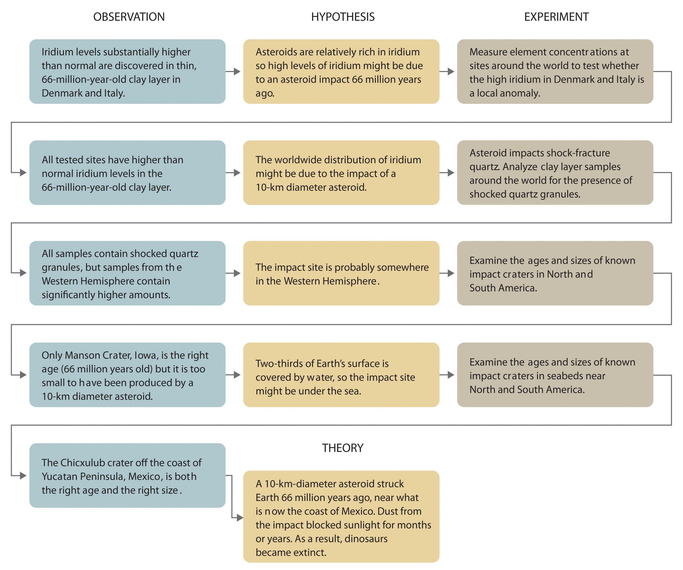 Worksheet Scientific Method Steps Worksheet Grass Fedjp