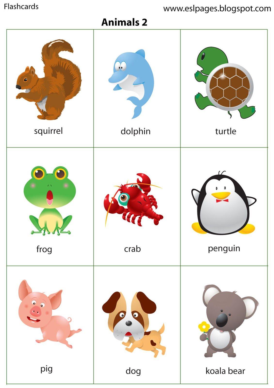Esl Pages Animals