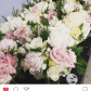 Wedding bouquets without roses  Pin by Megann Capic on Wedding flowers  Pinterest  Weddings