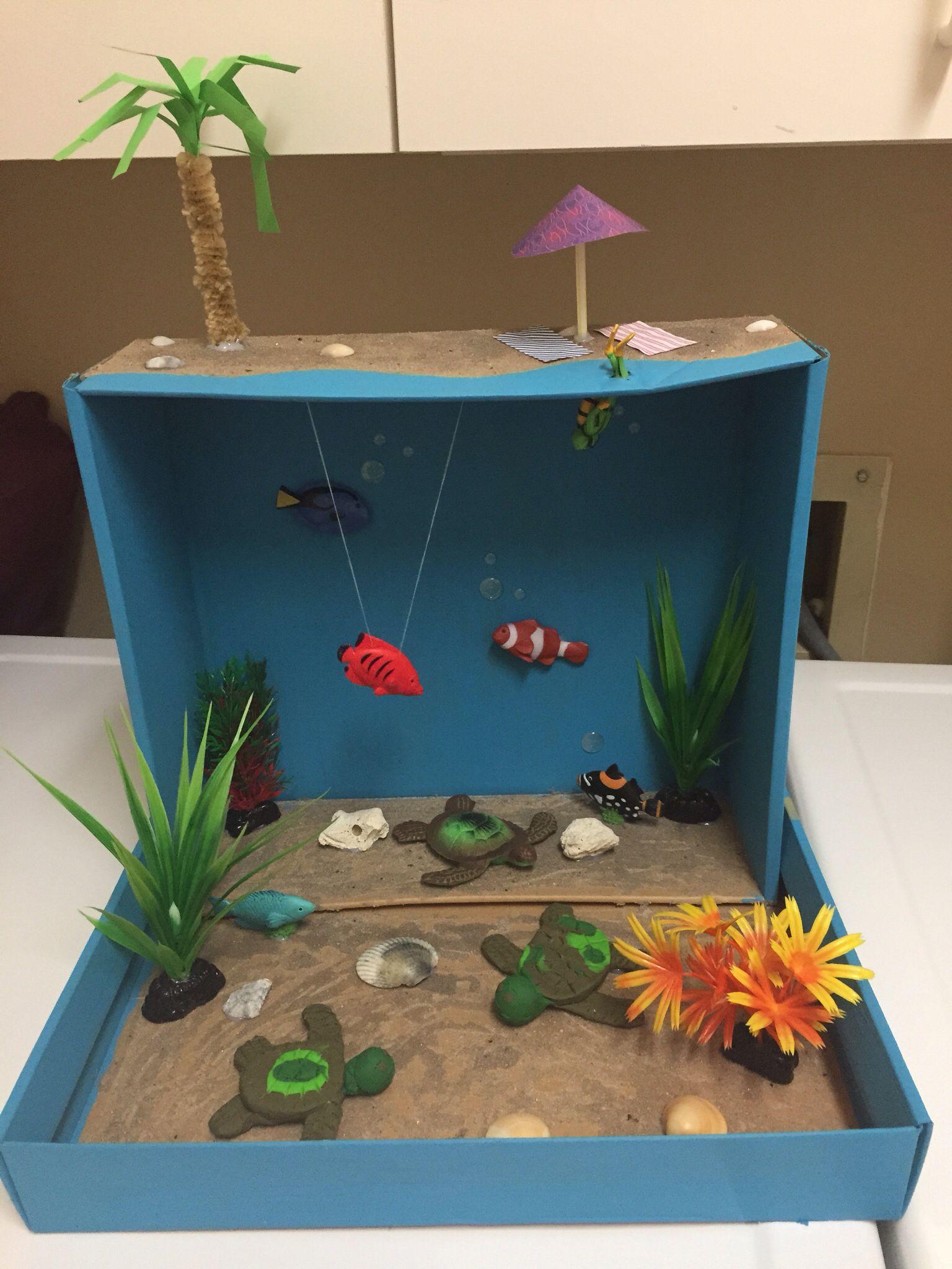 Coral Reef Diorama W Loggerhead Turtles