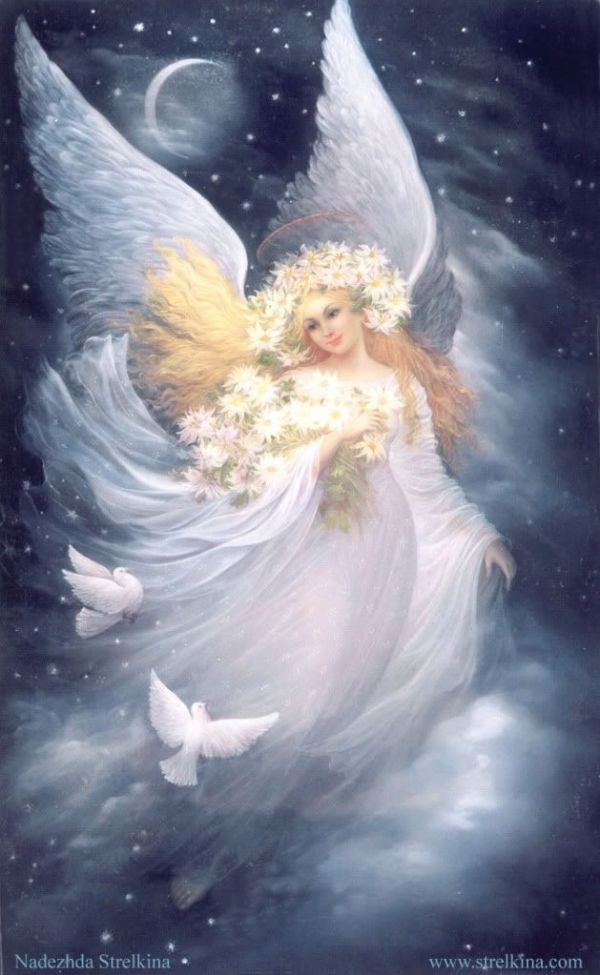 pictures of angels of god | angels of god praise god let ...