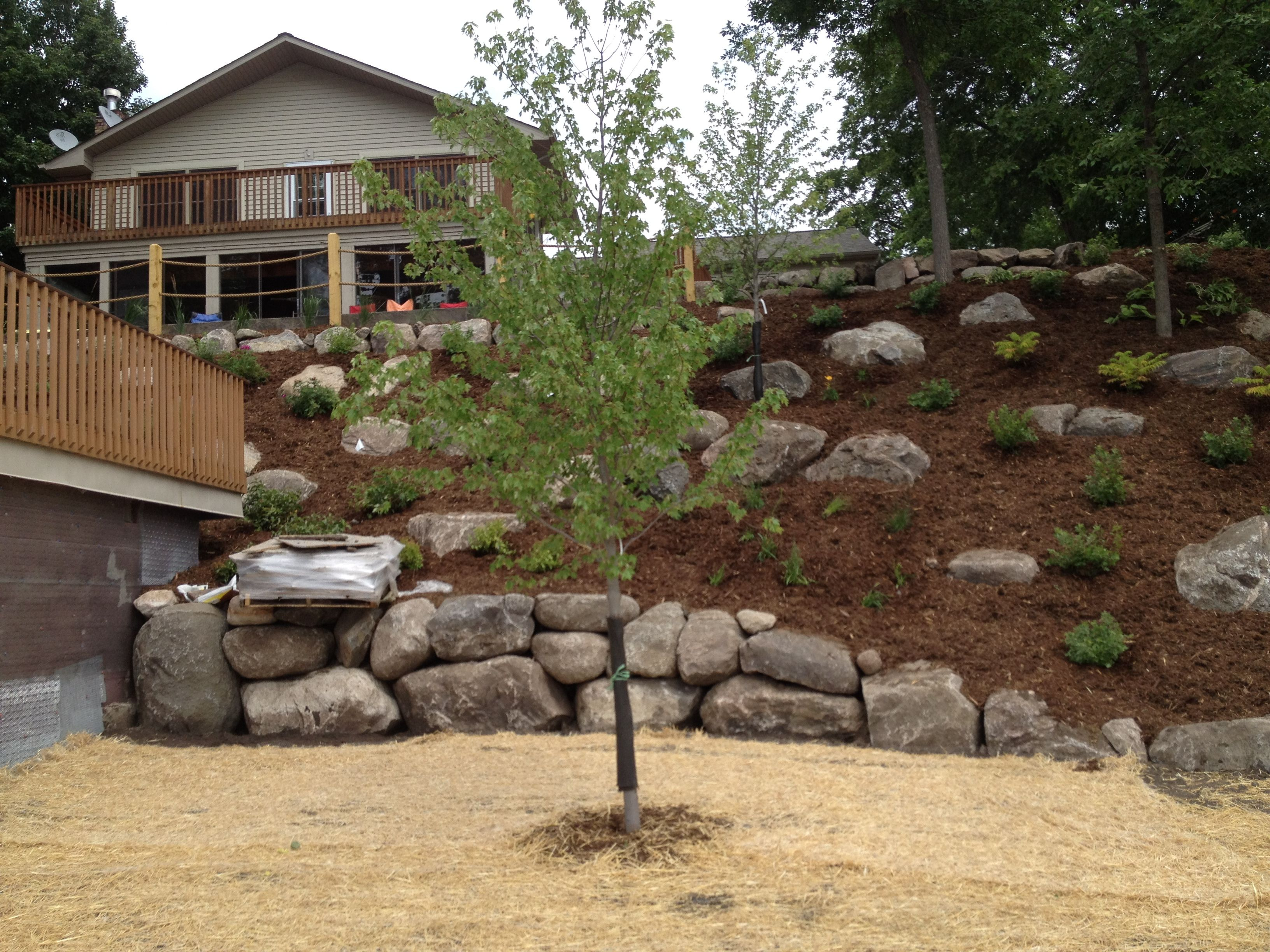 Landscaping Steep Hill | of a steep hill we sucessfully ... on Backyard Hill Landscaping Ideas id=22982