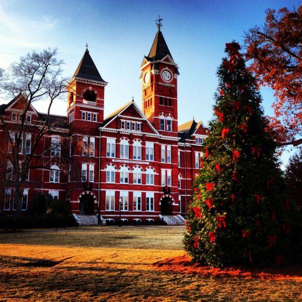 Samford Hall Christmas Tree #auburn | EXPLORE | Auburn ...