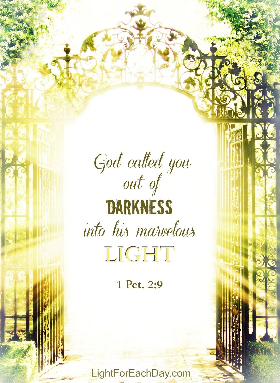 God Called You Out Of Darkness Into His Marvelous Light