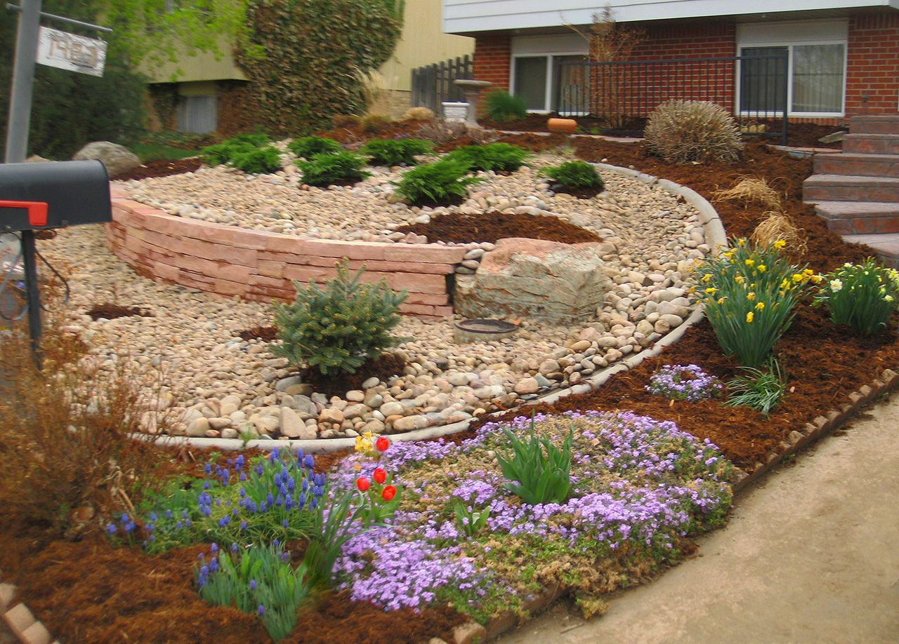 xeriscaping - Google Search | Back Yard | Pinterest ... on Xeriscape Yard Ideas  id=52024