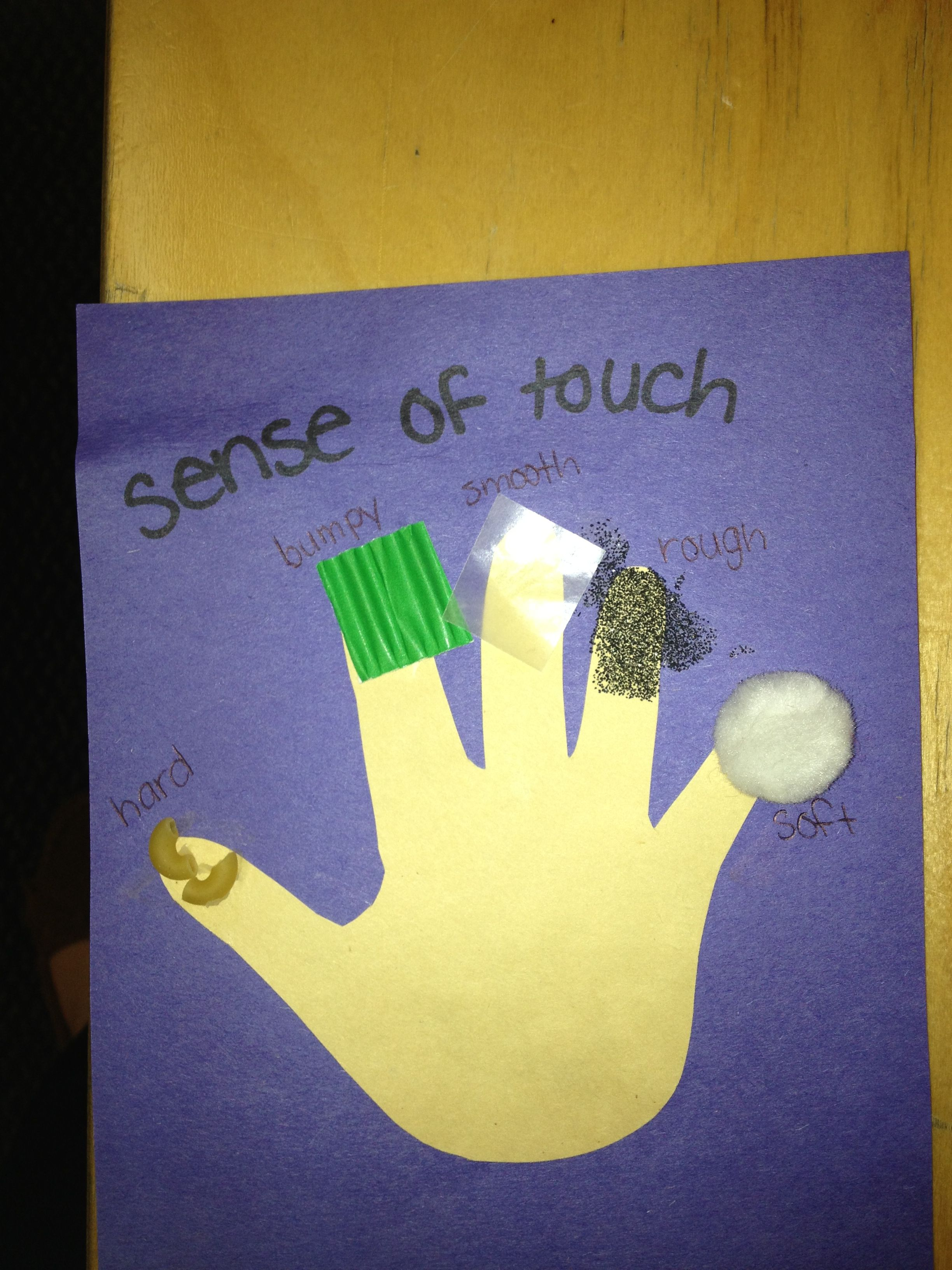 5 Senses Craft All Different Textures Etc On Each Finger Sand Foil Etc