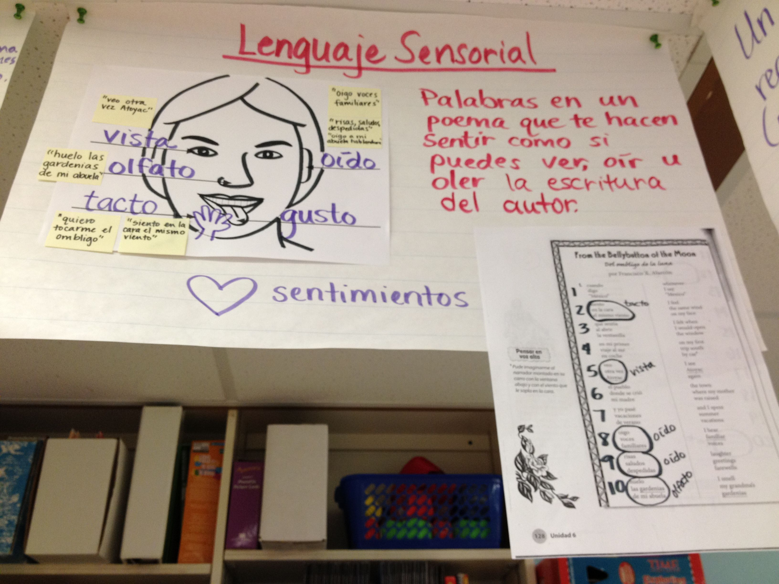 Sensory Language For Poetry Introduction Words In A Poem That Make You See Hear Or Smell The