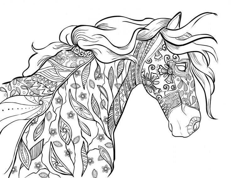Amazon Coloring Pages For Adults Google Search How