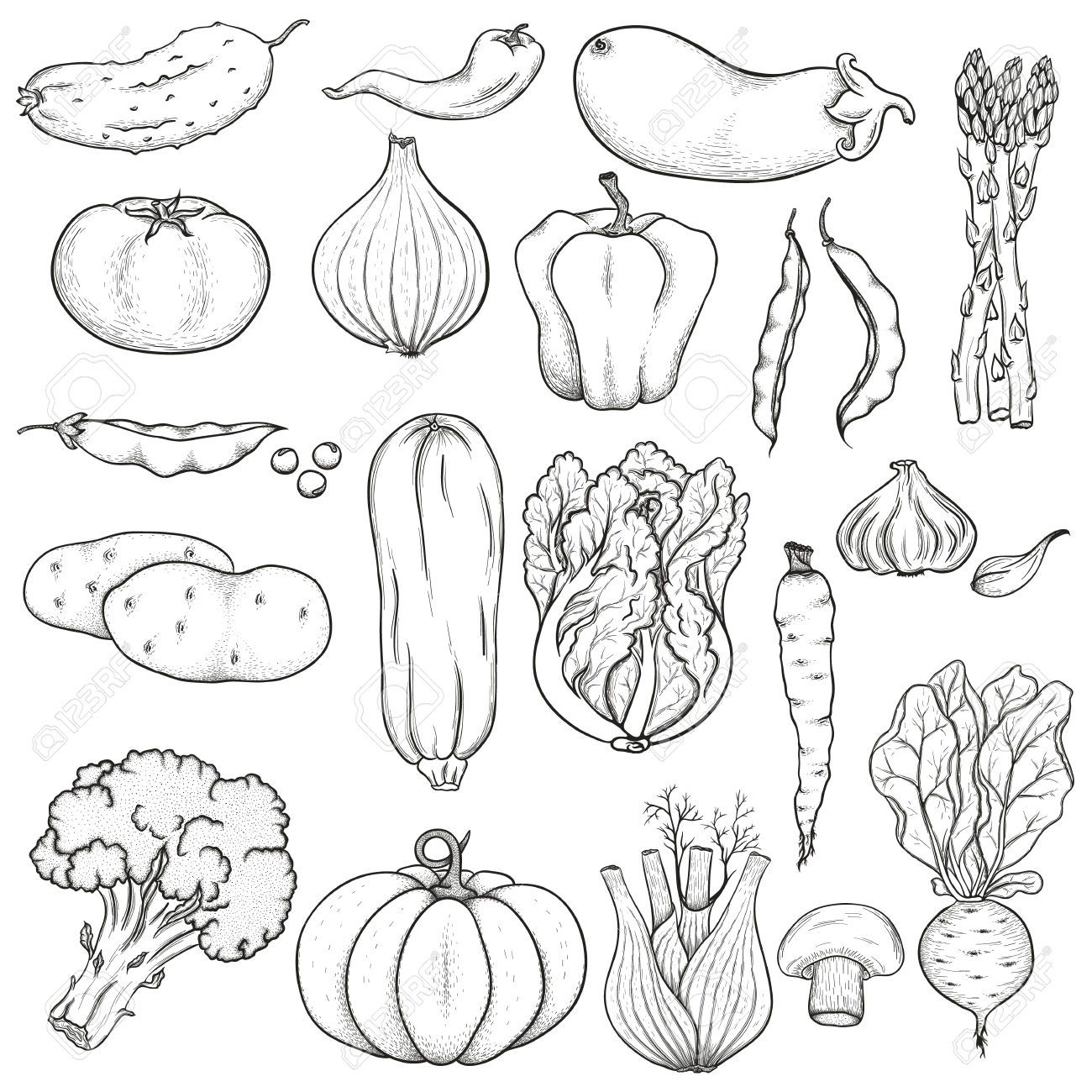 Clipart Vegetables Black And White