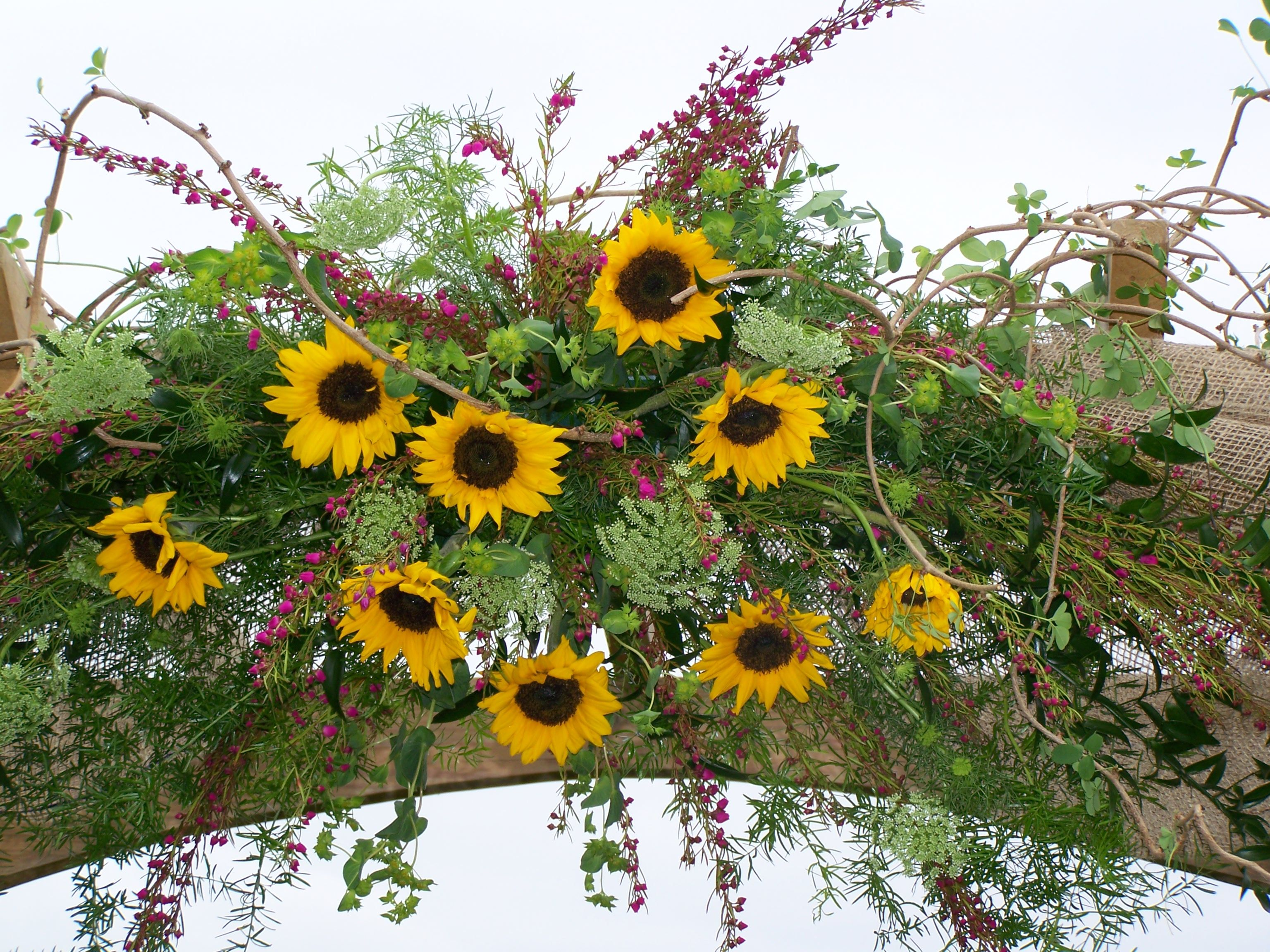 Decorated Wedding Arch In Sunflowers. Perfect For A