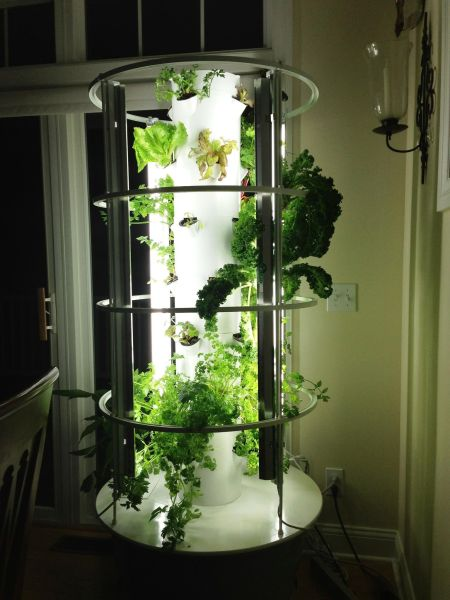 indoor vertical garden system The Tower Garden simplifies traditional gardening, using a
