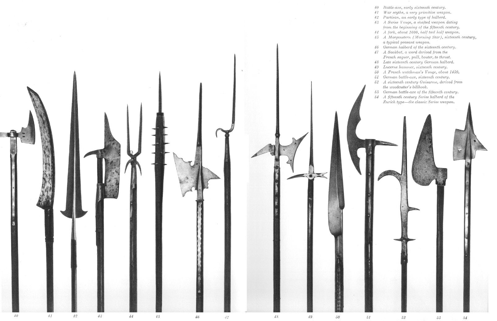 Various Polearm Heads Of Dwarven Elven And Human Kingdoms