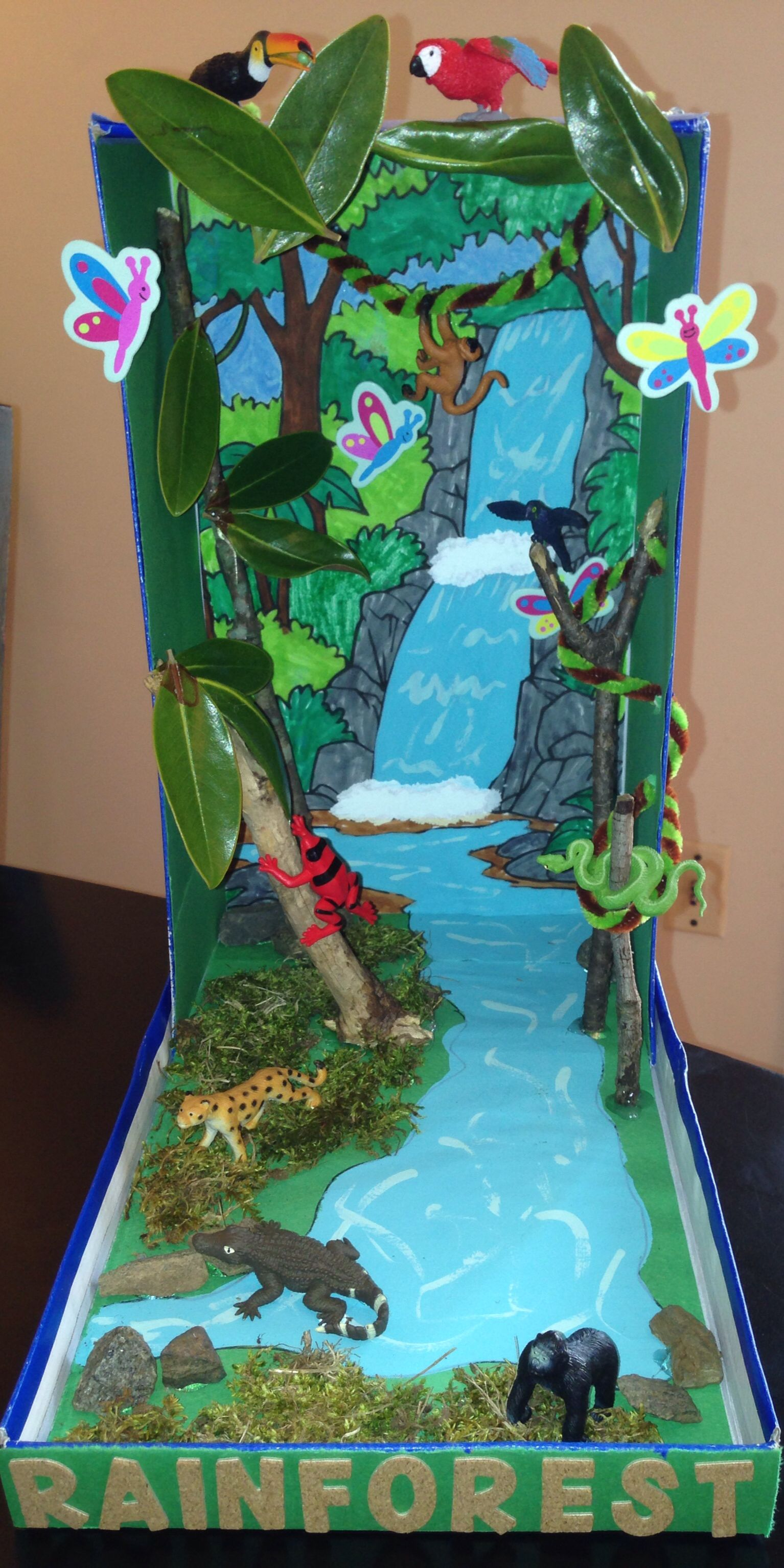 Rainforest Diorama Our Final Product My Son Samy Is