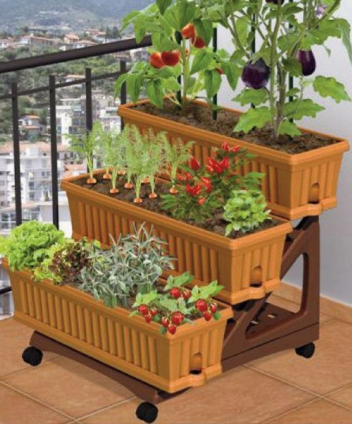 Patio Vegetable Gardening Ideas Photograph Garden Pati