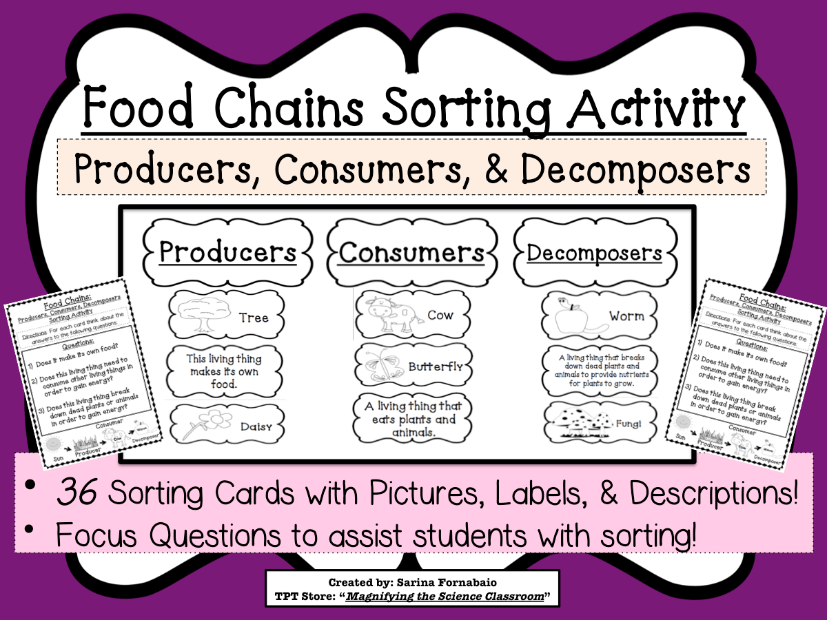 Food Chains Sorting Activity Game About Producers Consumers Decomposer Ccss