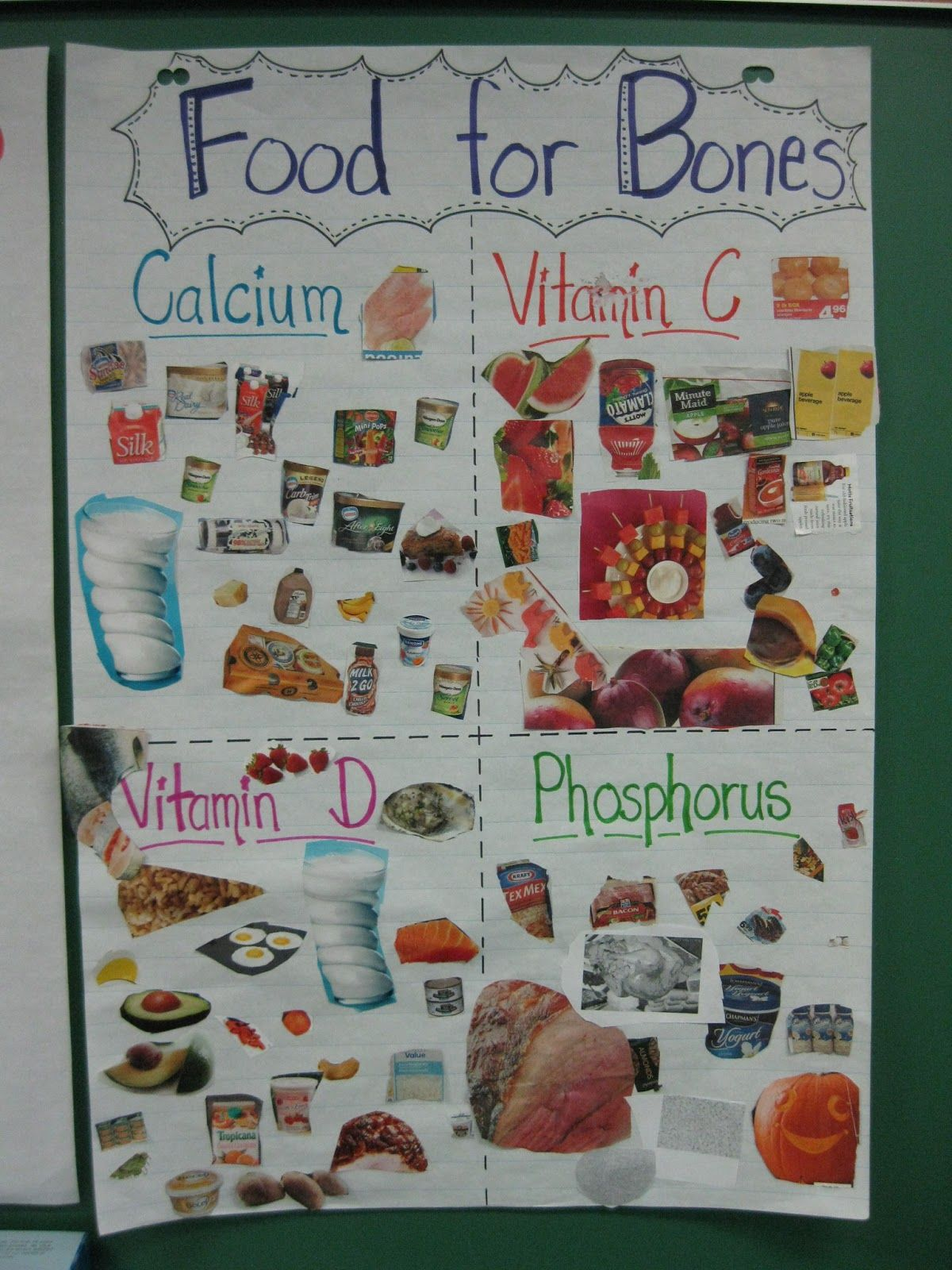 1 The Student Understands The Role Of Nutrients In The