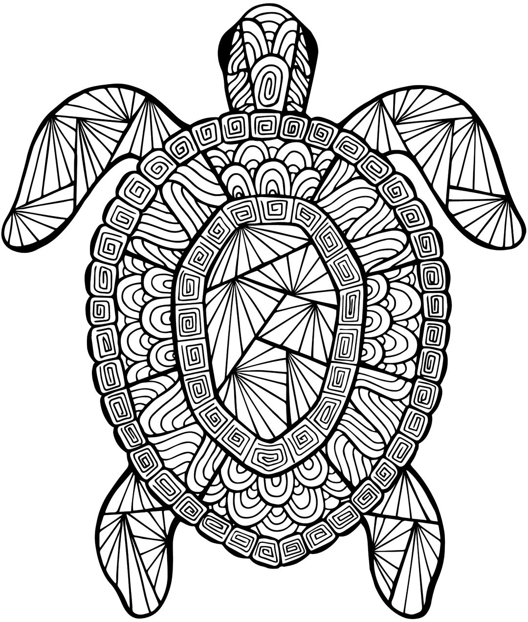 Detailed Sea Turtle Advanced Coloring Page