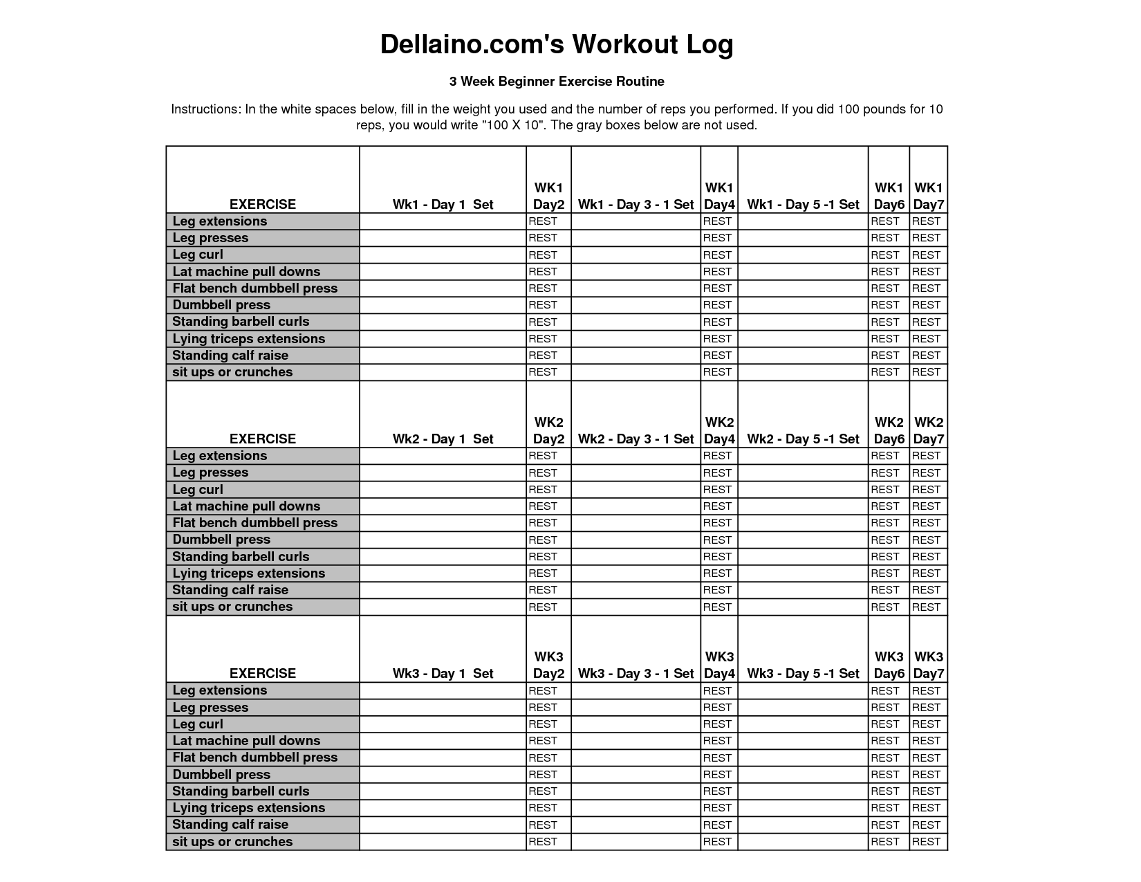 Bodybuilding Com S Workout Log Excel