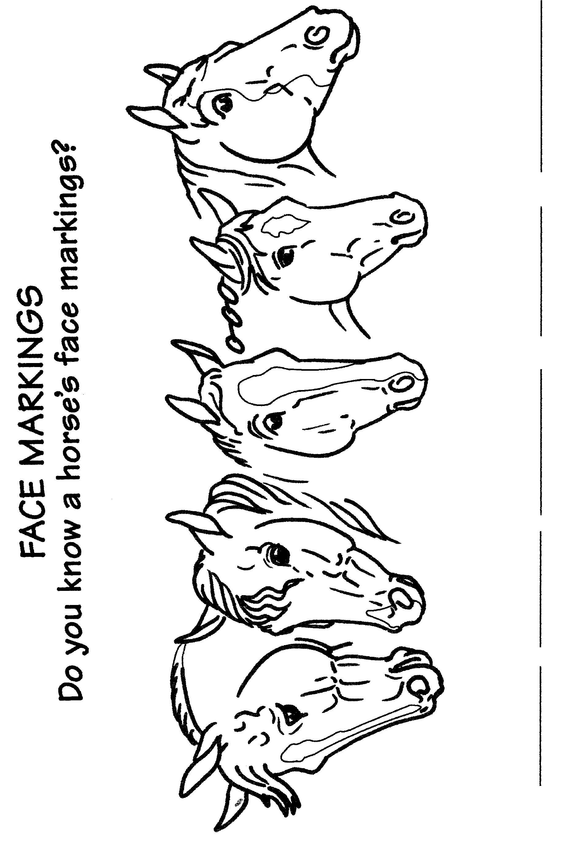 Horse Games Worksheet