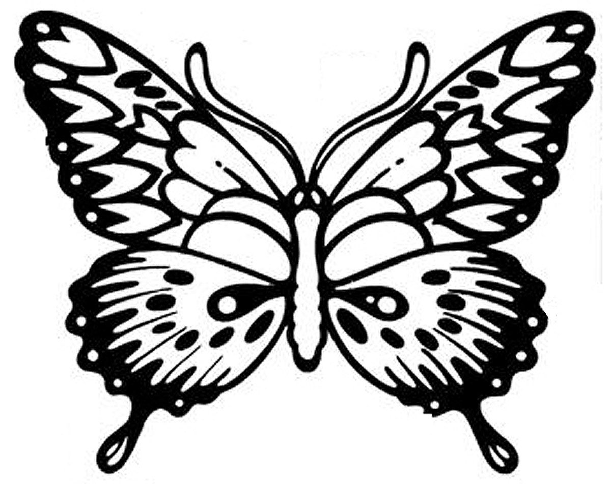 Detailed Butterfly Coloring Pictures