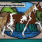 Mangalarga marchador horses horse coloring pages page book of