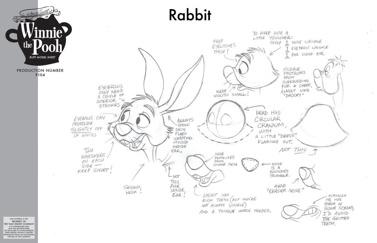 Anatomy Of A Rabbit Itchkingdom Disney