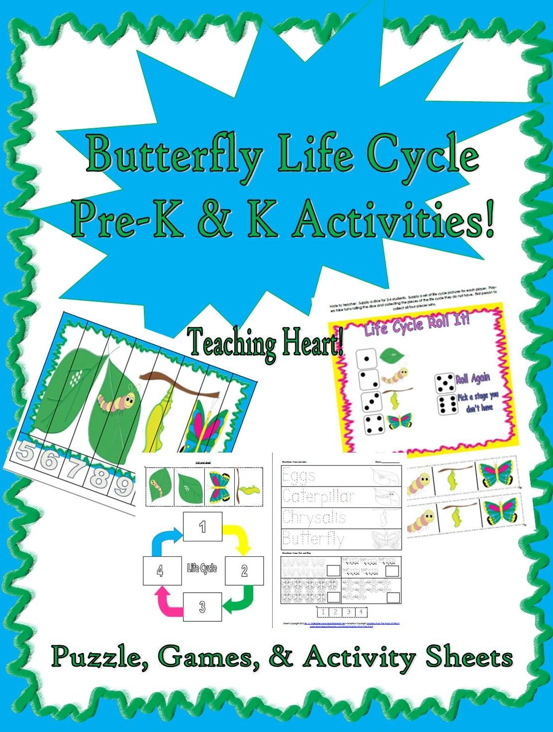 Caterpillar To Butterfly Life Cycle Activities For