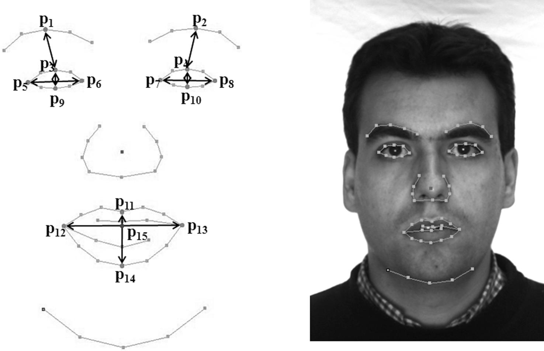 Facial Action Coding System Contempt