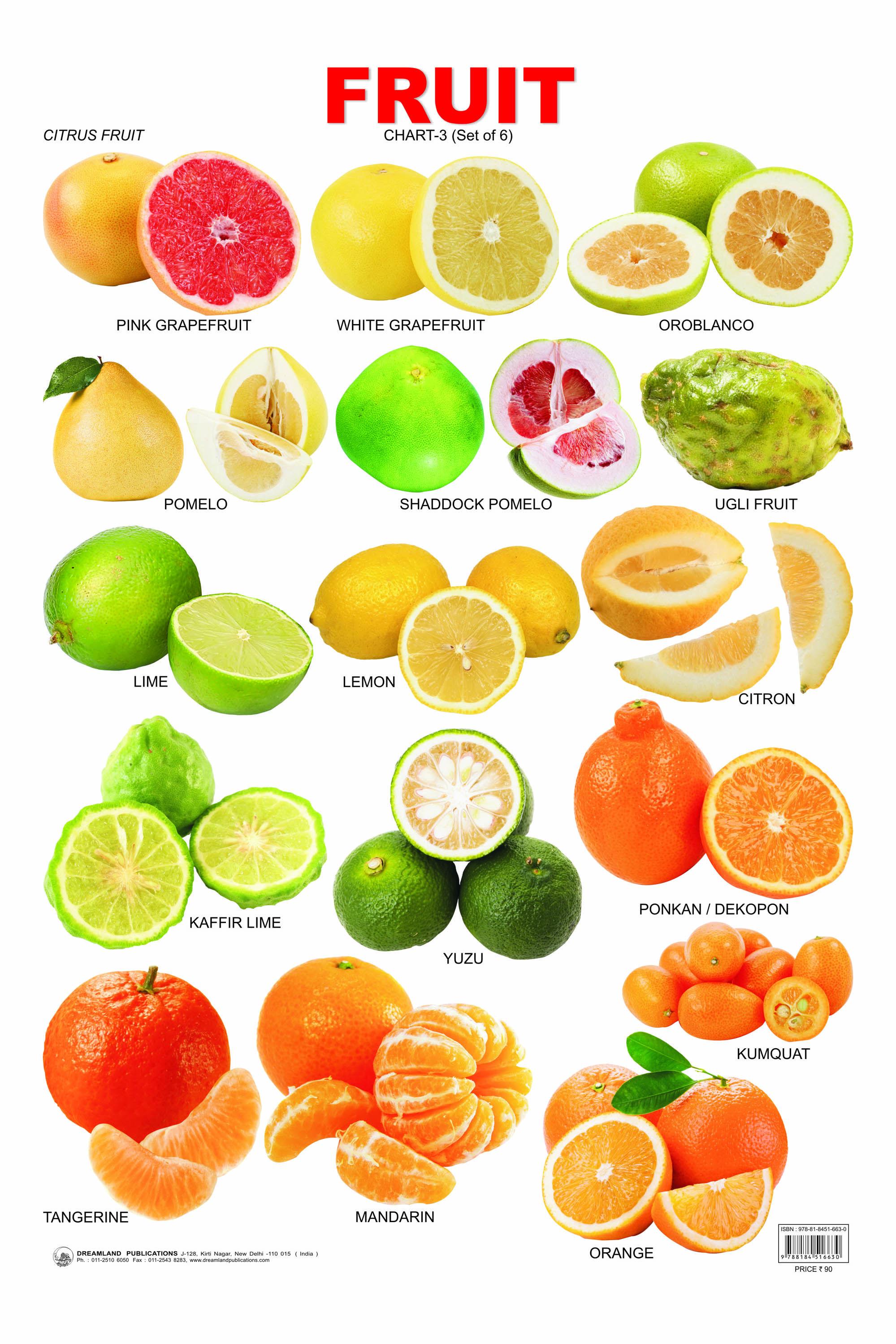 Citrus Fruit Chart