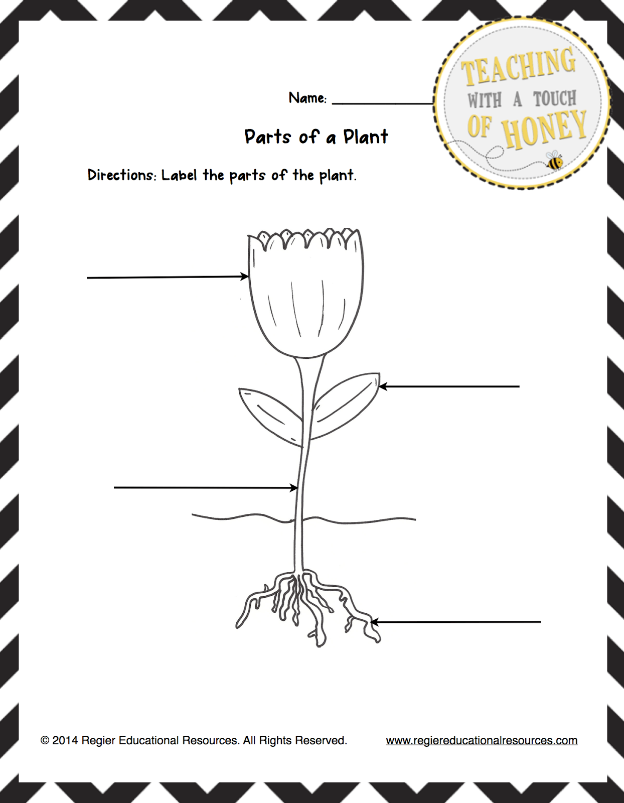Garden Worksheet Activities