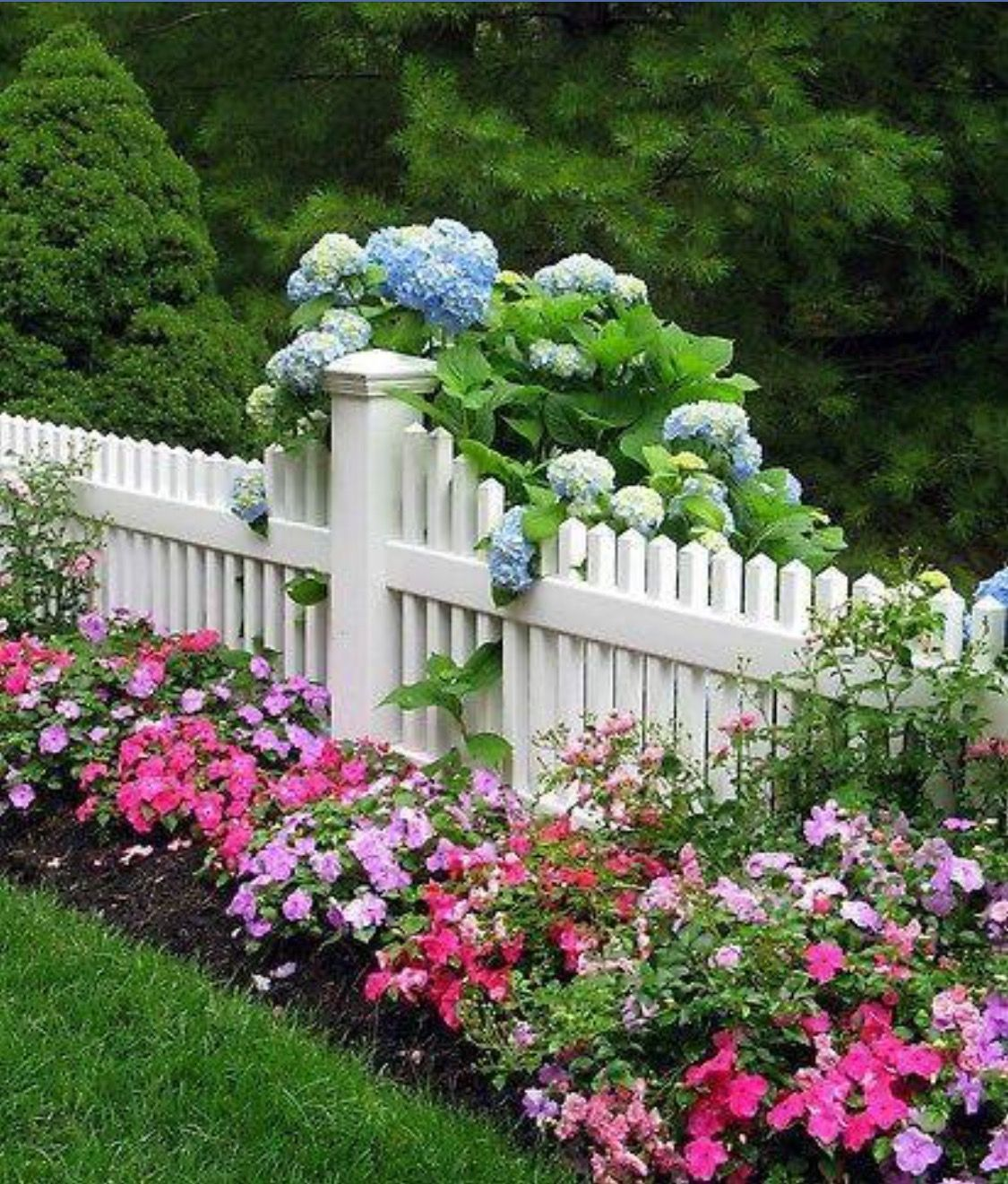 lovely border at a fence garden paths pinterest on backyard fence landscaping id=46589
