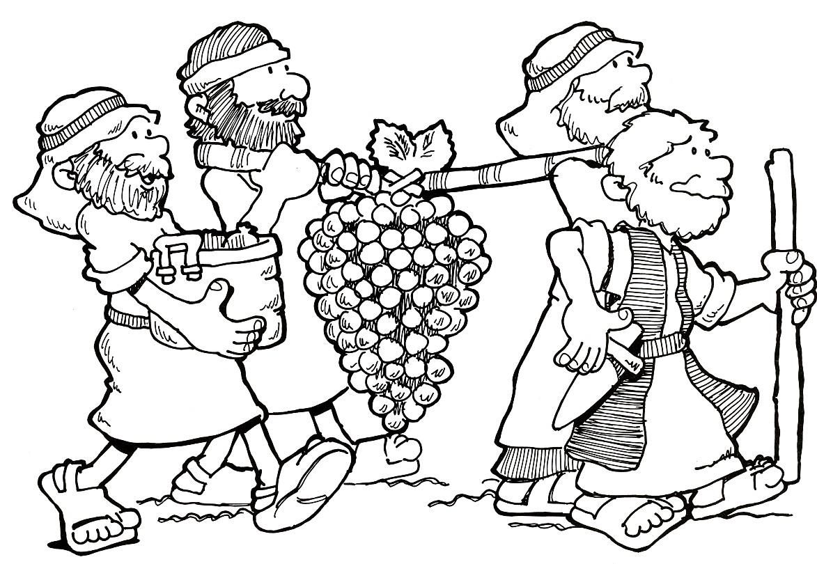 Coloring Sheets For The Story Of Joshua And Caleb 4 Coloring Sheets For The