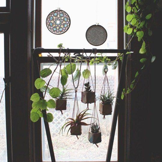 window indoor garden pods Best 25+ Indoor window garden ideas on Pinterest | Herb